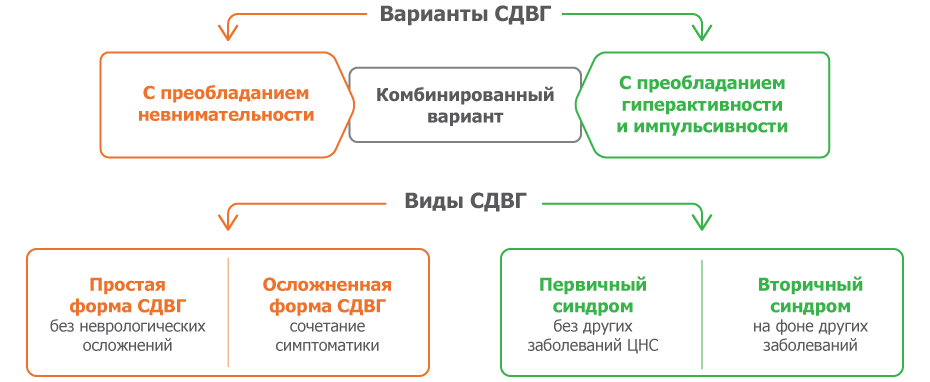 Варианты СДВГ у детей-1